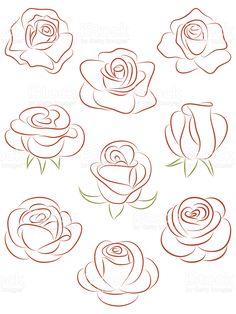 Conjunto de rosas. Ilustração vetorial. vetor e ilustração royalty-free royalty-free