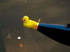Bow Ball: actually the coolest thing ever. I've seen a club where all the novice boats have a rubber duck as the bow ball
