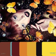 BUTTERFLY - color range II - Photographer : Bruno Dayan - In 1998, he moved to France and created images for campaigns such as Celine, Chantal Thomass, Dior, Escada, Jaeger Lecoultre, Le Bon Marché, Le Printemps, L'Oréal, Louis Vuitton, Yves St Laurent.... His editorial collaborations include Numéro, Vogue, Vanity Fair, Elle, Marie-Claire, Harper's Bazaar... Bruno is now working in between Paris and New-York in both film and print media. http://www.brunodayan.com/