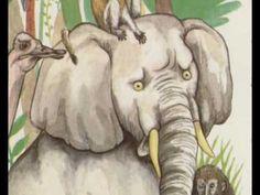 Cuenta Cuentos: ¿Dónde puede esconderse un elefante? - YouTube