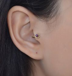 Rook Piercing Information and Inspiration Guide with 21 stunning rook piercing images. Information on rook piercing pain, healing, price, cleaning & care. Aquamarine Earrings, Silver Hoop Earrings, Amethyst, Diamond Earrings, Tragus Piercings, Tragus Piercing Jewelry, Rook Earring, Cartilage Earrings, Piercing