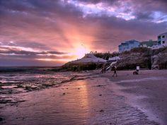 Puerto-Madryn.jpg (500×375)