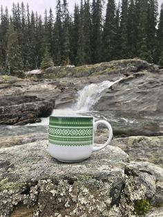 Enjoy Norwegian nature With Marius cup