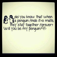 Penguin mate