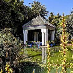 Jardin Majorelle - ogrody projektanta Yves Saint Laurent YSL w Marrakeszu 🌴🌵🌱🌿 Przepiękne, zielone miejsce pełne uroczych zakątków. Niestety bardzo zatłoczone przez turystów i spacerowanie to w pewnym sensie przepychanka. Ceny biletów uzależnione są od tego czy chcemy dodatkowo zwiedzić Muzeum Projektanta albo też Muzeum Berberów. Najtańsza opcja to 70 dirhamów. Polecam zobaczyć będąc w Marrakeszu 🌿🌱🌵🌴 . #jardinmajorelle  #majorelle #majorellegarden  #gardenmajorelle #ysl… Coleslaw, Delicious Desserts, House Styles, Saint Laurent, Gardening, Food, Home Decor, Cabbage Salad, Homemade Home Decor