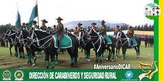 En 1966 Remonta y Veterinaria de @PoliciaColombia contaba con 1454 semovientes para el servicio montado rural #AniversarioDICAR