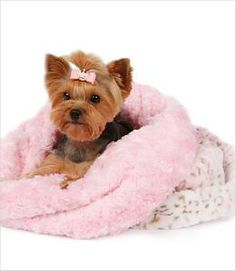 Pink Leopard & Curly Sue Cuddle Cup Bed