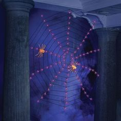 Buy Indoor/Outdoor Lighted Purple Spider Web Halloween Lights securely online today at a great price. Indoor/Outdoor Lighted Purple Spider Web Halloween Lights available t. Scary Halloween Decorations, Halloween Gifts, Spooky Halloween, Halloween Pumpkins, Halloween Ideas, Halloween Costumes, Orange Web, Green Web, Purple Halloween
