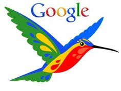 #SEO: #Google Hummingb scatenato