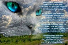 for any of you that have lost your family member...