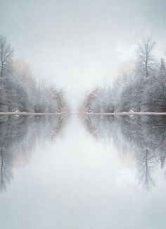 reflection in winter: trees around a lake hiver | @ pale |