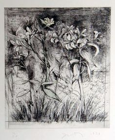 Superb Lilies (from A Temple of Flora) by Jim Dine  Etching, drypoint, photogravure & hand coloring