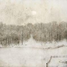By jamie heiden cant tell you how much I appreciate this rural farm scene of winter, so subtle and done with restraint. Painting Snow, Winter Painting, Winter Art, Painting & Drawing, Winter Landscape, Landscape Art, Landscape Paintings, Art Brut, Arte Floral