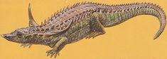 Resultado de imagen para desmatosuchus