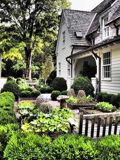 Jeanette Whitson - Garden Variety Design