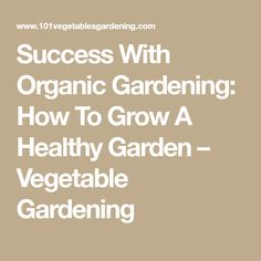 If you are looking to start your own organic garden, there are a few tips that will help you steer clear of the main problems people tend to encounter when they begin their own . Vegetable Gardening, Organic Gardening, Buy Seeds, Success, Vegetables, Healthy, Gardens, Horticulture, Vegetables Garden
