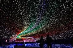 At Japan's Nabana no Sato botanical garden on the island of Nagashima in Kuwana, visitors can walk through beautiful tunnels wrapped in millions of tiny LED lights. The effect, as the photos show, is dazzling Nabana No Sato, Winter Light Festival, Festival Lights, Light Tunnel, Monte Fuji, World Festival, Destination Voyage, Holiday Lights, Christmas Lights