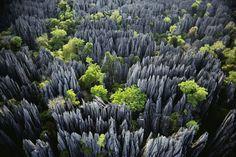 Un bosque de piedra en la Reserva Natural Integral de Tsingy de Bemaraha en Madagascar - Lugares que ver antes de morir (V)
