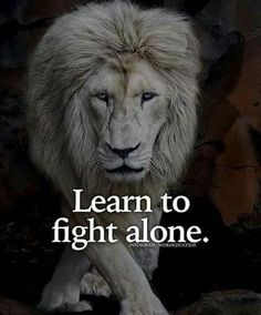 Then you gain the wisdom to fight for what is right and who to surround yourself with. You can fight alone, but with the right ones you don't got to. Great Quotes, Quotes To Live By, Me Quotes, Qoutes, Motivational Quotes, Inspirational Quotes, Lion Quotes, Trust No One Quotes, Doodle Quotes