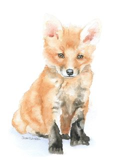 Baby Fox watercolor giclée reproduction. (Original has been sold.)Portrait/vertical orientation. Printed on fine art paper using archival pigment inks. This qua