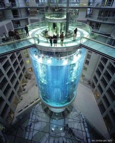 The AquaDom in Berlin, Germany, is a 25 metre tall cylindrical acrylic glass aquarium with built-in transparent elevator. It is located at the Radisson Blu Hotel in Berlin-Mitte. The DomAquarée complex also contains a hotel, offices, a restaurant, and the aquarium Sea Life Centre.  (01)