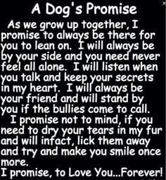 A Dog's Promise ♥