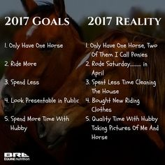 1a0286ffc6 2017 Expectations VS 2017 Reality Equestrian. Funny horse quote  BRLequine   2017  equestrianproblems