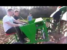 Sadzenie czosnku wiosna 2014 - YouTube