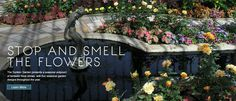 http://www.comozooconservatory.org/attractions/gardens/sunken-gardens/#/info