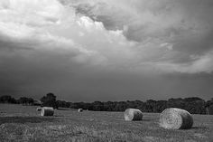 Hay Bales Black And White by Ann Powell - Photography #photograph #photographs #photography
