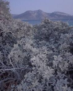 "Marisa Tabti on Instagram: ""Le soir  #koufonissi #koufonisia #keros #lesoir #dusk #shadesofgrey #landschaftsfotografie #landscapephotography #photography…"" Shades Of Grey, Dusk, Landscape Photography, City Photo, Mountains, Instagram, Travel, Outdoor, Outdoors"