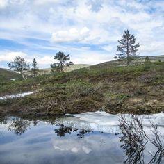 Pallas juhannusviikolla 2020 Mountains, Nature, Travel, Naturaleza, Viajes, Trips, Off Grid, Natural, Mother Nature
