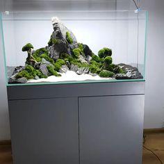 Awesome Mountain Stone With Moss Trees Planted Aquarium Layout – aquascaping Planted Aquarium, Aquarium Garden, Betta Aquarium, Aquarium Landscape, Aquarium Setup, Nature Aquarium, Aquarium Design, Garden Terrarium, Aquarium Stand