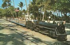The Crandon Park zoo train. A special treat to go on that train ride as it went all through the Crandon Park Zoo Florida Girl, Old Florida, Vintage Florida, South Florida, Beach Photos, Cool Photos, Miami Attractions, Miami Pictures, Crandon Park
