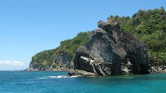 A Day Trip at Negros Oriental's Slice of Paradise: Apo Island Philippines Vacation, Mexico Vacation, Vacation Places, Day Trip, Hotels And Resorts, Where To Go, Cool Places To Visit, Travel Destinations