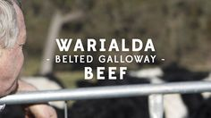 Yes, it takes four years of care and attention to get a piece of our beef in a bag to sell to you. This and more in a video about Warialda Belted Galloways Beef by Dibble Take That, Profile, How To Get, Beef, Sayings, Things To Sell, User Profile, Meat, Lyrics