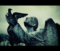 «Angels On The Sideline»  Do you believe in heaven above? Do you believe in love?