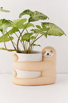 Ideal for both the home & garden, explore Urban Outfitters' collection of plants, planters & terrariums. Choose from a range of plant pots, vases and terrariums. Diy Clay, Clay Crafts, Planting Succulents, Potted Plants, Potted Flowers, Ceramic Pottery, Ceramic Art, Ceramic Planters, Planter Pots