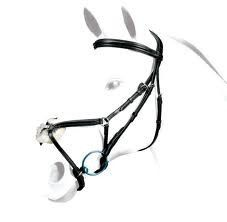 Selleria Equipe Grackle Bridle with Shaped and Padded Headpiece  http://earnequestrianonline.com