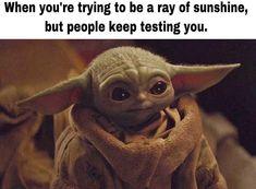 Yoda Meme, Yoda Funny, Stupid Funny Memes, Funny Relatable Memes, Hilarious, Funny Stuff, Yoda Images, Best Funny Videos, Star Wars Humor