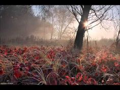 Dvorak - Romance for piano and violin, Op.11
