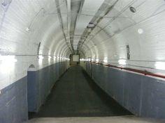 Picture of Wynyard Tram Tunnel