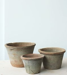 Aged Standard Pots - Father Rabbit Ltd