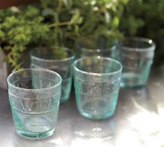 Vino Recycled Glass Tumbler, Set of 6 | Pottery Barn #vinepair