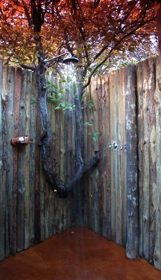 exterior: Glamorous Outdoor Shower Design Ideas With Awesome Natural Wooden Tree Design And Prepossessing Wooden Wall Design, Lovely Outdoor Shower Ideas for Rejuvenating Time in Splendid Summertime, Homestoreky: Home Interior Design and Decorating Ideas