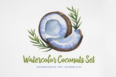 Watercolor Coconuts Set by chelovector on Creative Market