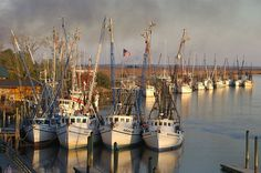 DARIEN GA BOATS | Large Shrimpers, Private Marinas with guides, driving tour with history, galleries, festivals. Have enjoyed many fishing trips there...fresh water into the ocean.