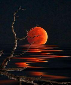 Red Moon Reflections 😍😎😄 Via; - Sue Brimhall Red Moon Reflections 😍😎😄 Via; Moon Painting, Painting & Drawing, Red Moon, Orange Moon, Art Abstrait, Pastel Art, Moon Art, Painting Techniques, Painting Inspiration