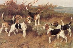 Arthur Wardle - Dogs