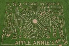 50 Years in Space corn maze design at Apple Annie's in Willcox, AZ.